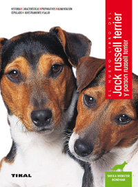Jack russell terrier y parson russell terrier